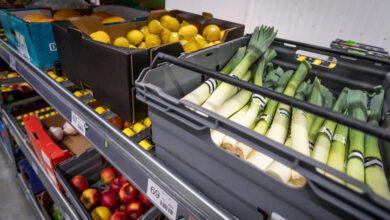 Bild von Online-Supermarkt MatHem plant Frische mit KI